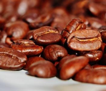Light Coffee hạt rang